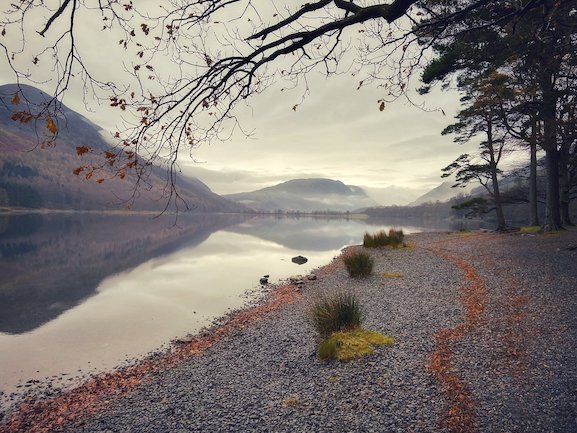 Copper Trails at Buttermere Lake