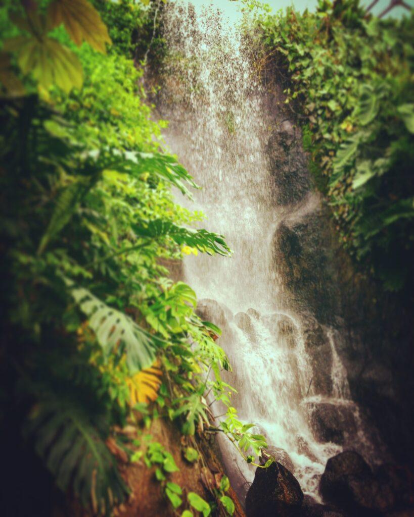 eden project waterfall