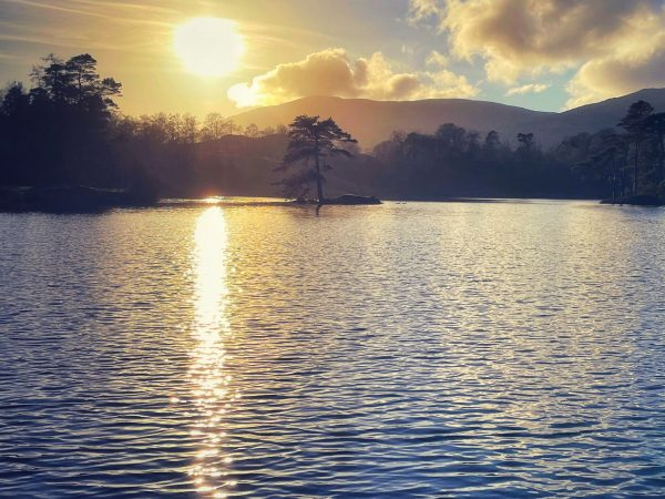 Tarn Hows Sunlight and Silhouettes