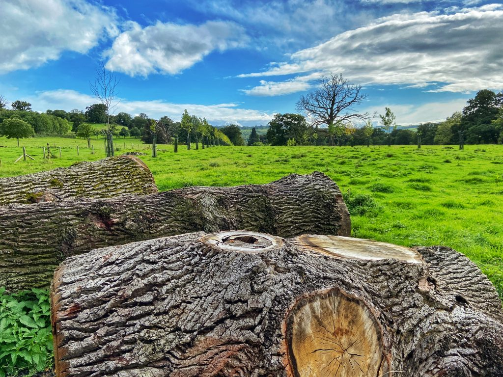 Cotswolds countryside walks